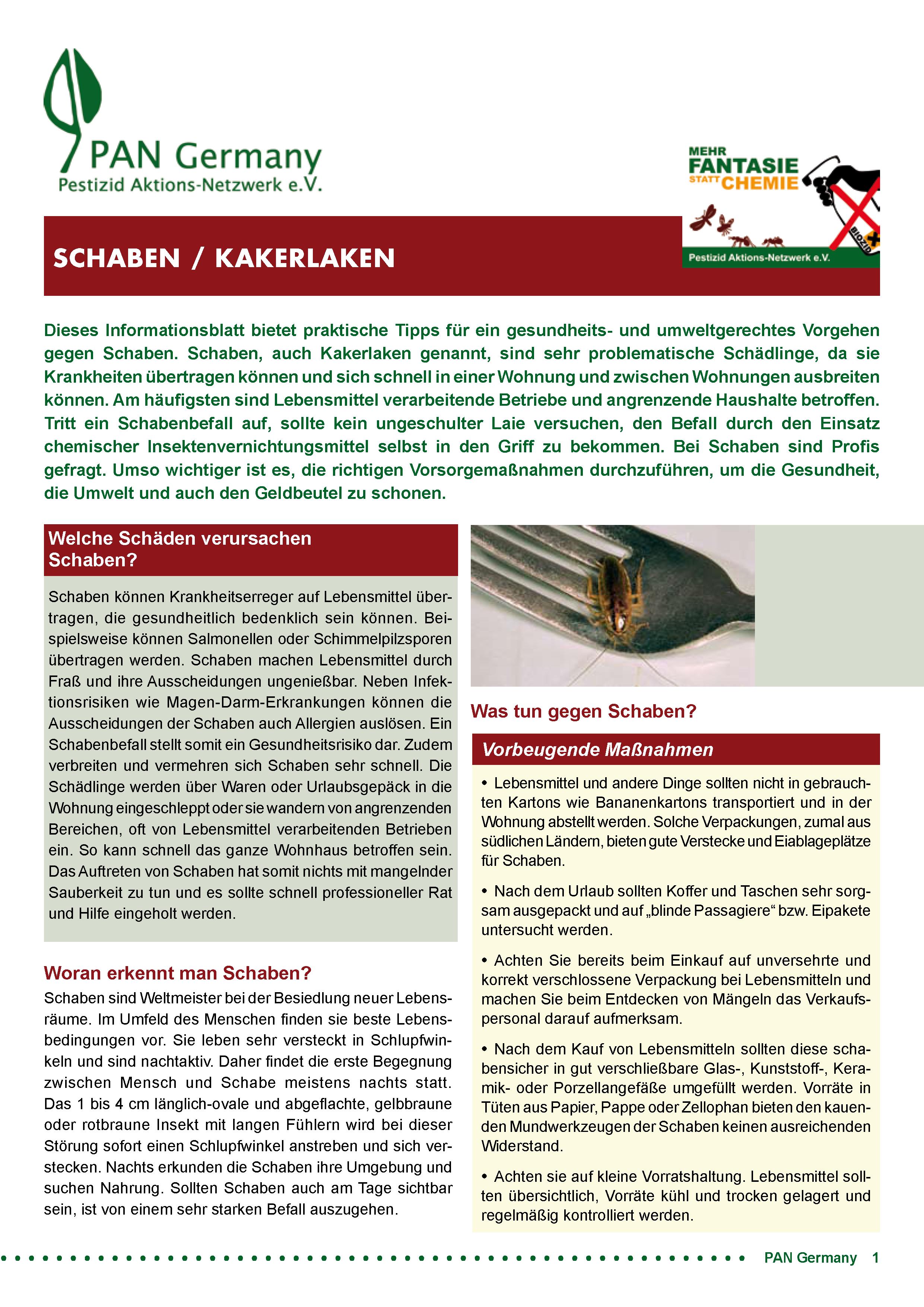 Cover Infoblatt Schaben / Kakerlaken