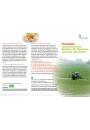 Faltblatt: Pestizide - Unterschätzte Risiken für Mensch, Umwelt und Natur