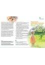 Faltblatt: Hormonell wirksame Pestizide - Eine schleichende Gefahr