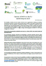 Gemeinsame NGO Stellungnahme: Opinion of NGOs in the EU SAICM Beyond 2020