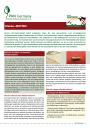 Informationsblatt Kleidermotten