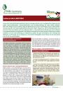 Informationsblatt Lebensmittelmotten