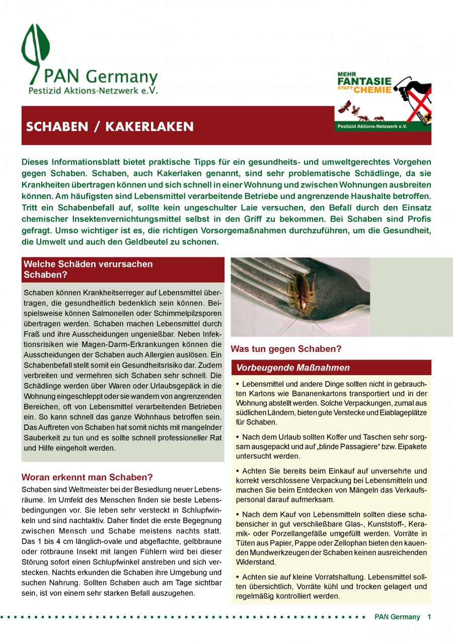 Informationsblatt Schaben / Kakerlaken