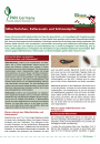 Informationsblatt Silberfischchen, Kellerasseln und Schimmelpilze